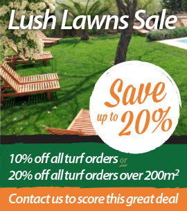 Lush Lawns Sale