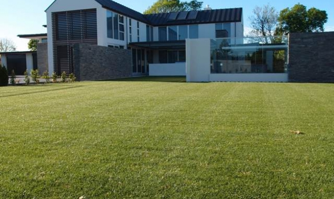 Gallery texture plants for Ready lawn christchurch